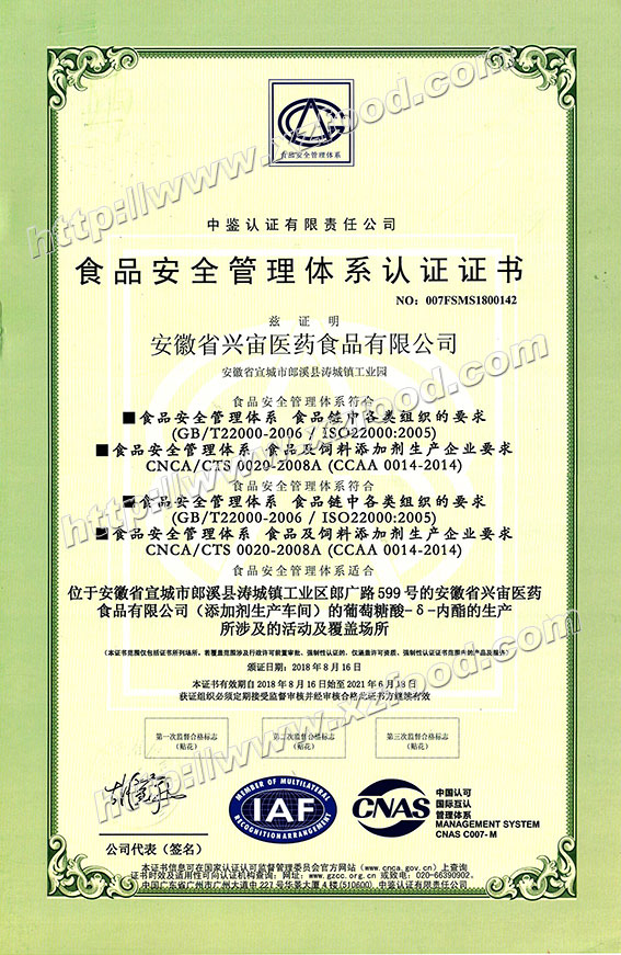 ISO22000 Food Safety Management System Certificate - Chinese Version